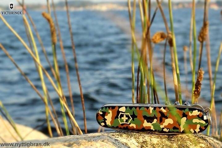 Schweizerkniv med på camping med udsigt over havet