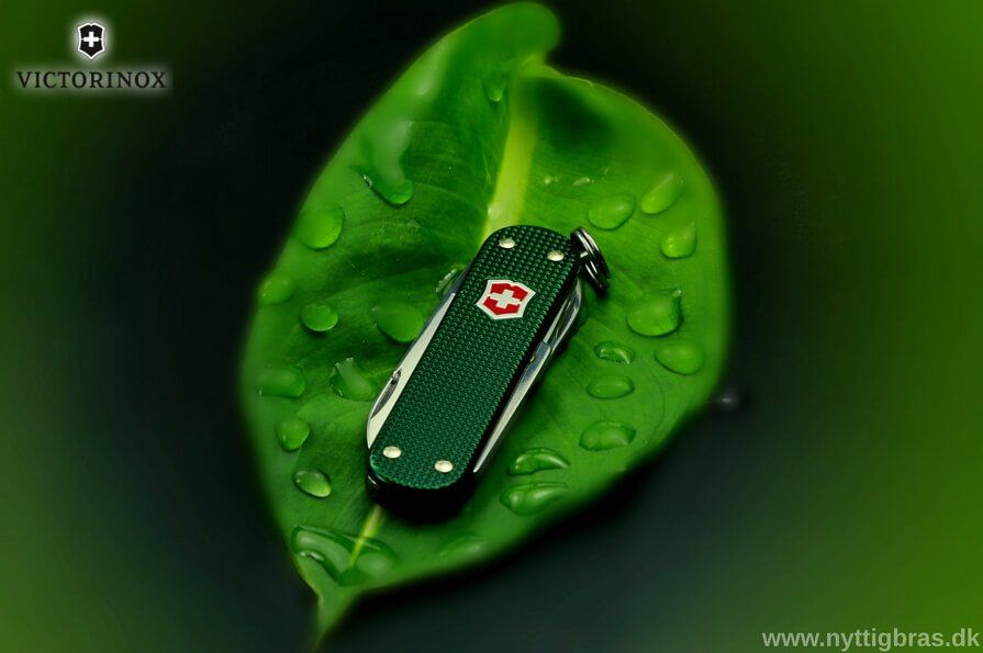 lommekniv på en grønt blad